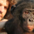 bonobo_hare3