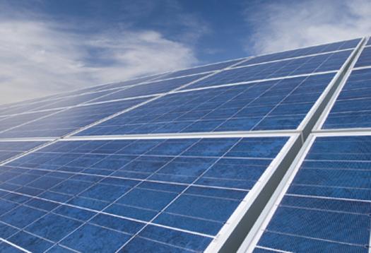 Solar panel farm on the Livingston Campus