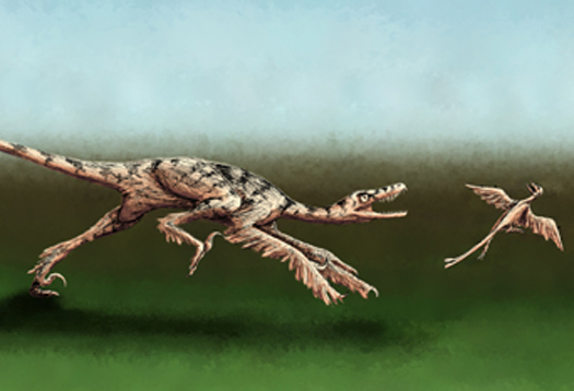 sinorinthosaurus3