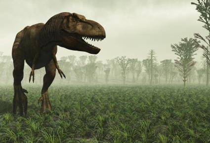 T-rex_1