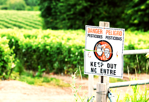 pesticides_1