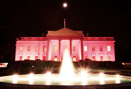 pink_whitehouse_1
