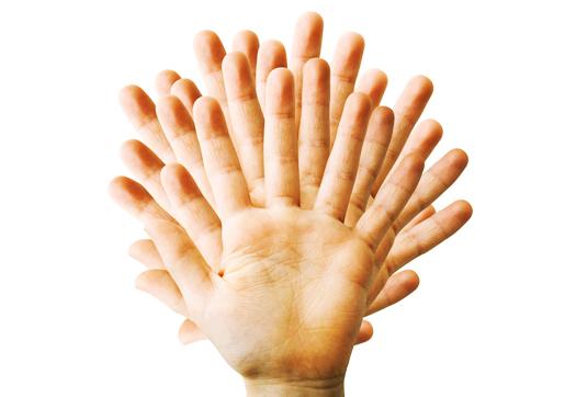 fingers_florida_1