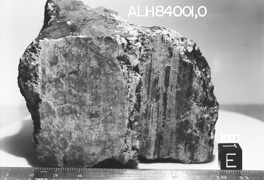 ALH84001_meteorite_1
