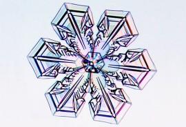 Platelike snowflake_1