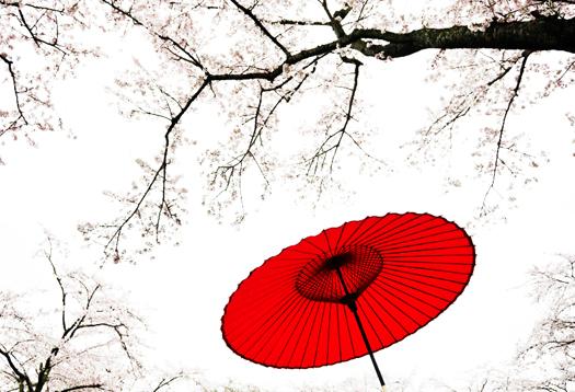 flowers-tree_1