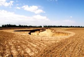 Gully fields on O'Brien Ridge. Photo: Lois Wright Morton