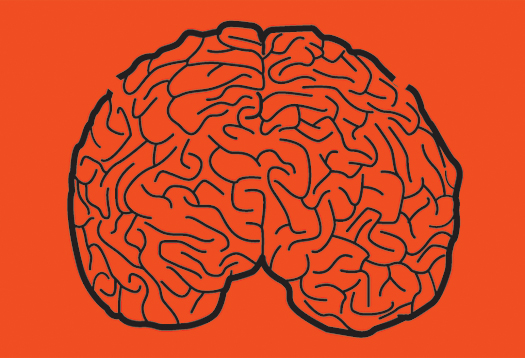 red_brain