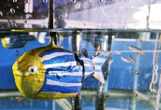 Robotic Zebrafish_1