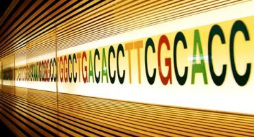 DNA_art_1
