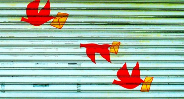 bird_letters_525