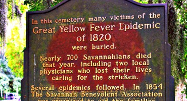 yellow_fever_plaque
