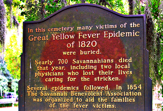 yellow_fever_plaque