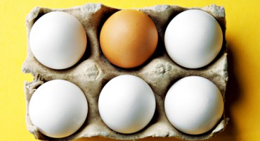 eggs_525