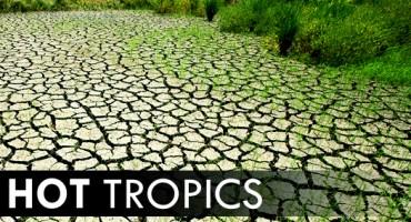 hot_tropics_525