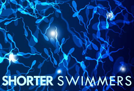 shorter_swimmers_525