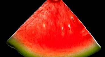 watermelon_525