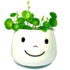 happy_plant_525