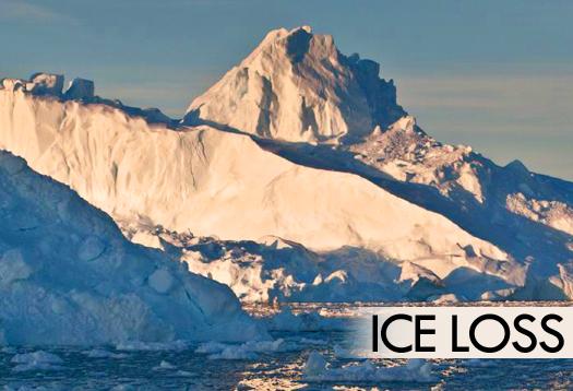ice_loss_525