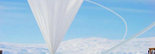 TIGER-balloon_525