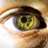 eye_macro_1