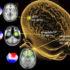 harm_brain_1