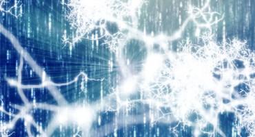 white_neurons_525