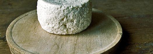 cheese_525