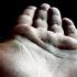 hand_macro_525