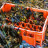 plastic_crate_525