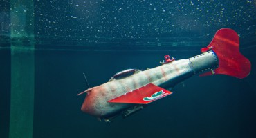 robofish-side_1