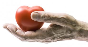 senior_heart_hand_1