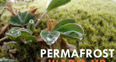 permafront_warmup_525