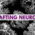 rat_neurons_525