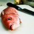 fishface_525