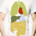 organ_shirt_525