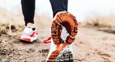 sneakers_525