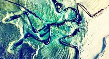Archaeopteryx_525