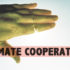 climate_cooperation_525