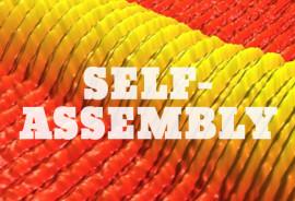 self-assembly