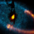 Fomalhaut A is the 18th-brightest star visible in our night sky and one of the few stars with both a directly imaged exoplanet and a dusty debris disk. This view shows a new picture of the dust ring around the bright star Fomalhaut from the Atacama Large Millimeter/submillimeter Array. (Credit: ALMA (ESO/NAOJ/NRAO). Visible light image: NASA/ESA Hubble Space Telescope)