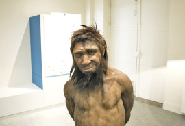 A reconstruction of the homme de Spy, the name given to the skeleton of a Neanderthal man found in 1886 in a cave in Spy (Namur, Belgium), was made in January 2012 by the paleo artists Adrie & Alfons Kennis. (Credit: Boris Doesborg/Flickr)