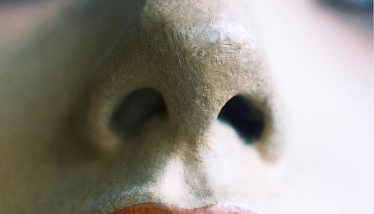 fake nose