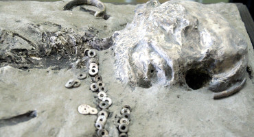 Also found near the boy's remains were flint tools, a beaded necklace, and what appears to be pendant-like items, all apparently placed in the burial as grave goods. (Credit: Vladimir Gorodnjanski 2007/The Hermitage Museum, Saint Petersburg; Courtesy: Don Hitchcock)