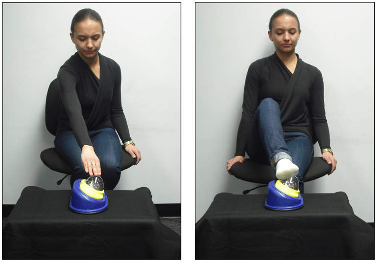 An experimenter demonstrates using her hand or foot to activate the toy used in the experiment. (Credit: Saby JN, et al. (2013) Infants' Somatotopic Neural Responses to Seeing Human Actions: I've Got You under My Skin. PLoS ONE 8(10): e77905. doi:10.1371/journal.pone.0077905)