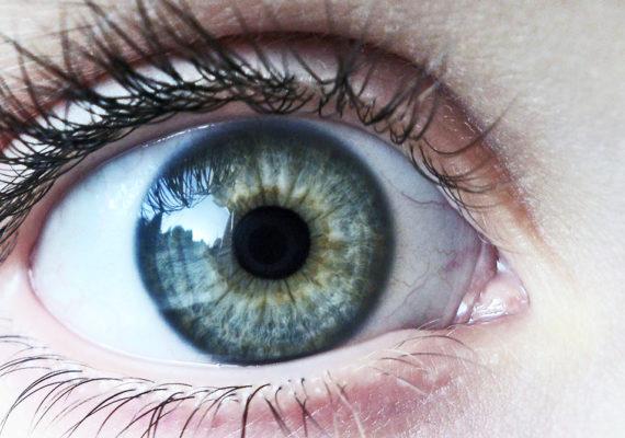 The cornea is the clear window that allows light into the eye and helps focus it. Scarring, swelling, or other damage to the cornea can lead to blurred vision. Such damage can occur after injuries or infections, from inherited conditions, or as a complication of cataract surgery. (Credit: Karen Roe/Flickr)