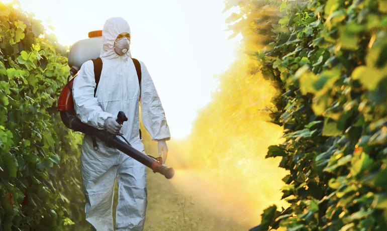 Although the levels of DDT and DDE have decreased significantly in the United States over the last three decades, the toxic pesticide is still found in 75 to 80 percent of the blood samples collected from the Centers for Disease Control and Prevention for a national health and nutrition survey. (Credit: iStockphoto)
