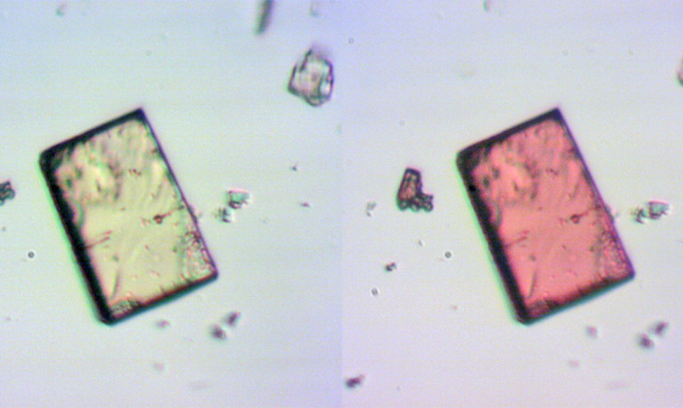 This sponge-like crystal contains many pores that change shape when exposed to ultraviolet (UV) light. In addition, the normally colorless crystal (left) blushes in the presence of UV light, turning red (right). (Credit: Ian M. Walton)