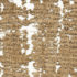 "Aurelius Polion's letter to his brother, sister, and his mother ""the bread seller,"" reads like one of a man who is very desperate to reach his family after sending six letters that have gone unanswered. A portion of the letter is pictured above. See the full image below. (Courtesy of University of California, Berkley's Bancroft Library)"