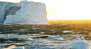 An iceberg floats in the northern Weddell Sea during summer. A layer of sea ice has blanketed the entire Weddell Sea every winter since the Weddell polynya closed in 1976. (Credit : Eric Galbraith)